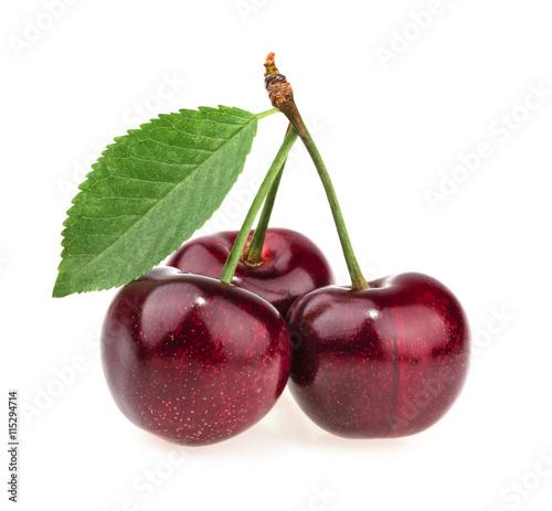 Foto auf Gartenposter Kirschblüte cherries isolated