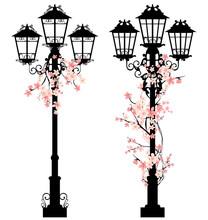 Spring Streetlights Among Flow...