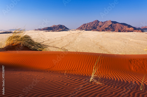 obraz lub plakat Detail of a red dune and mountains in Namibia, Africa