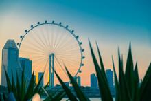 21 July, 2014 Singapore. Singa...