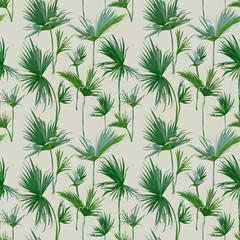 fototapeta jednolity tropikalny wzór palmowy