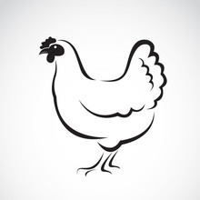 Vector Of A Hen Design On Whit...