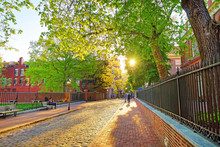 Romantic Sunset Viewed Through The Tree Leaves In Philadelphia Old City Centre
