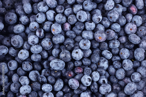 Photo  blueberry background