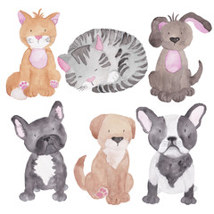Cats Dog Set watercolor Illustration Pet Clipart Hand-painted Animal