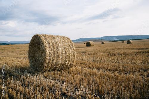 Keuken foto achterwand Rood traf. haystacks