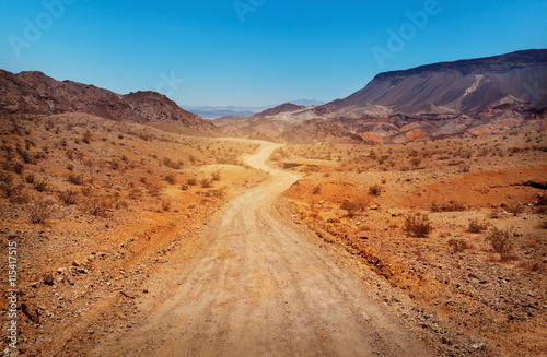 Photo  The road in desert. Southern Nevada, USA