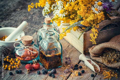 Bottles of tincture and dry healthy herbs Canvas Print