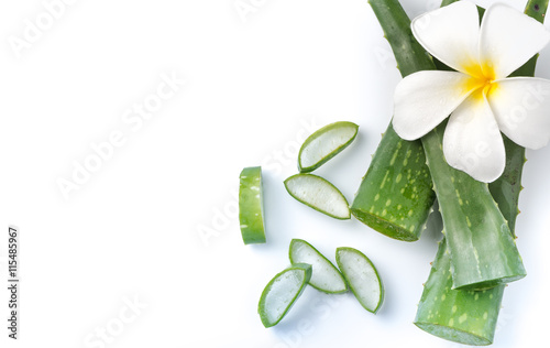 Poster Condiments Aloe Vera sliced isolated