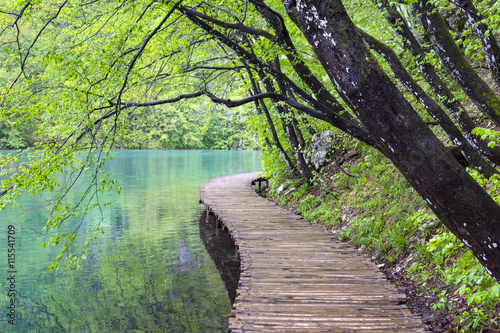 Fotobehang Bos rivier View to the boardwalk at Plitvice Lakes (Croatia)