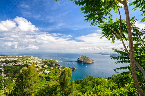 Pinturas sobre lienzo  Aerial view on Aragonese castle through foliage, Ischia, Italy