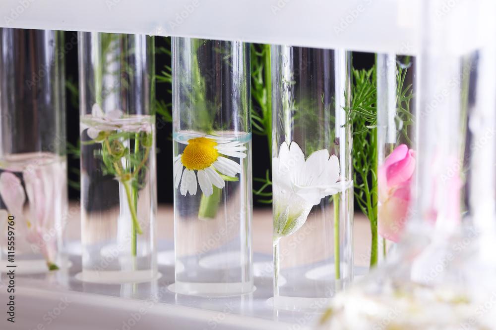 Photo & Art Print Process of making perfumes   EuroPosters