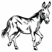 Donkey Stylized Drawing Illust...