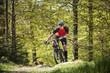 Sweden, Blekinge, Solvesborg, Ryssberget, Mature man riding on mountain bike through forest
