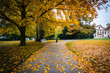Autumn color and walkway at a park, in Prague, Czech Republic.