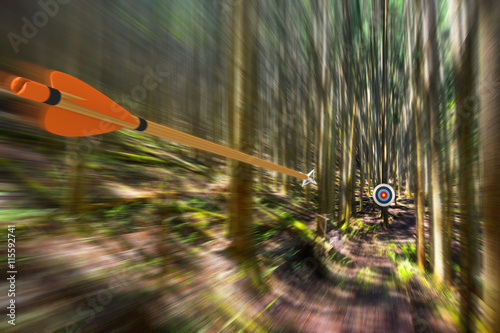 Leinwand Poster Arrow traveling through air at high speed to archery target with motion blur, pa