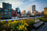 Fototapeta Nowy Jork - Flowers, bench, and view of buildings in Chelsea from The High L