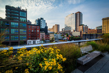 Flowers, Bench, And View Of Bu...