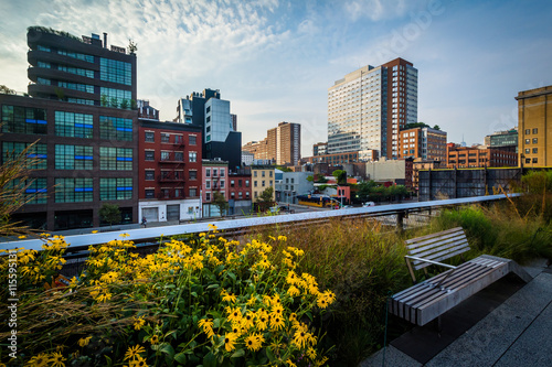 Photo  Flowers, bench, and view of buildings in Chelsea from The High L