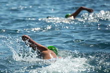 Two Swimmers Swam In The Sea, View From Behind