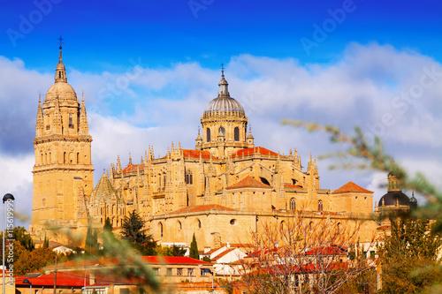 In de dag Madrid Salamanca Cathedral in autumn