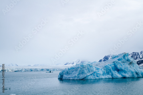Foto op Plexiglas Arctica svalbard view of the landscape during the summer season