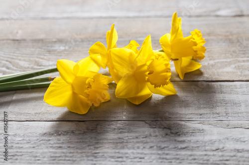 Deurstickers Narcis Yellow flowers