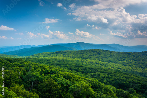Fotografie, Obraz  View of the Blue Ridge Mountains from Stony Man Mountain in Shen