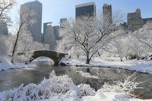 Central Park In Snow, Winter, New York