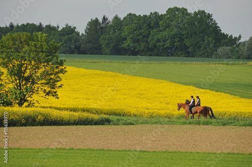 Tuinposter Paardrijden Ausritt zu zweit