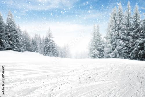 Fotobehang Wit winter time