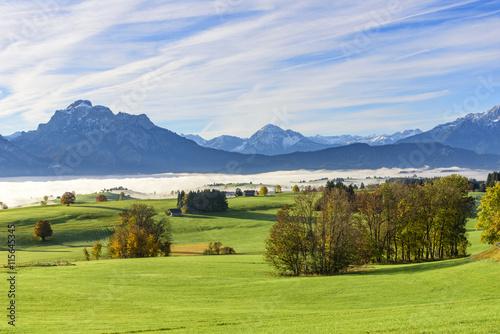 Keuken foto achterwand Wijngaard Goldener Oktober am Alpenrand