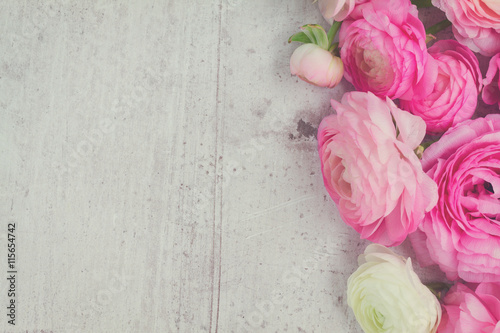 Garden Poster Floral Pink and white ranunculus flowers on aged white wooden background, retro toned
