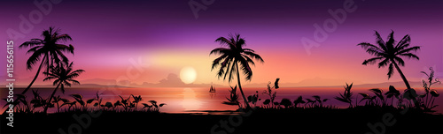 Fototapeta Tropical Sunset Background obraz