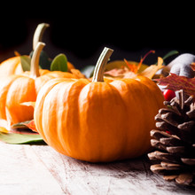 Autumn Still Life With Pumpkin