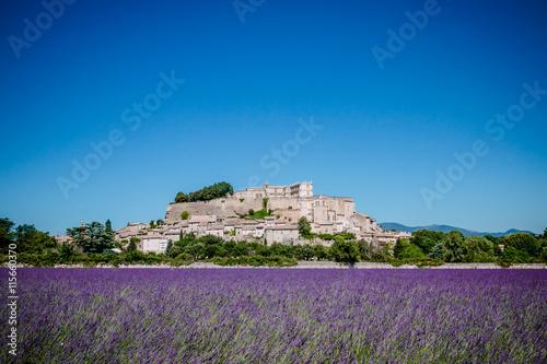 Canvas Prints Lavender Champs de lavandes devant le village de Grignan