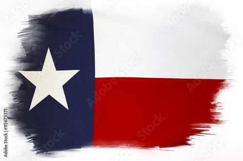 Fotografía  Texas flag