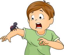 Kid Boy Scared Spider