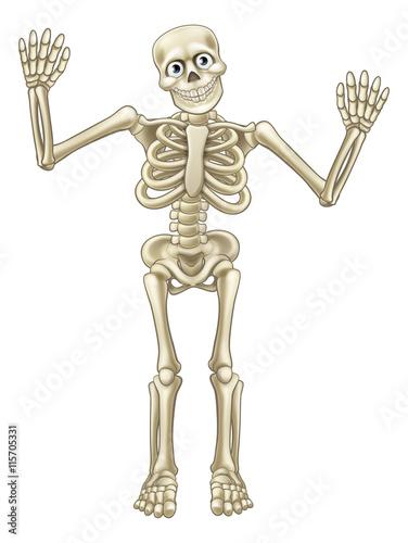 rysunkowy-szkielet-dla-dzieci