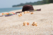 Tropical holiday beach getaway