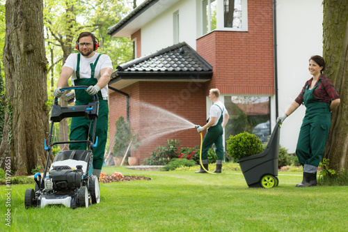 Mowing  and watering the lawn after winter