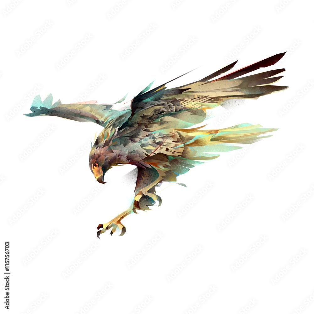 eagle attacking