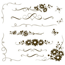 Decorative Calligraphic Elements With Wild Chamomile Flowers. Floral Ornaments And Butterfly Silhouettes For Page Decor