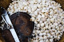 Fresh Organic White Bulb Garlic For Sale At A Market For Farm Pr
