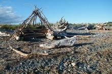 Driftwood Shelter On A Sandy Beach
