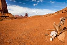 Tree Monument Valley - Desert - Usa