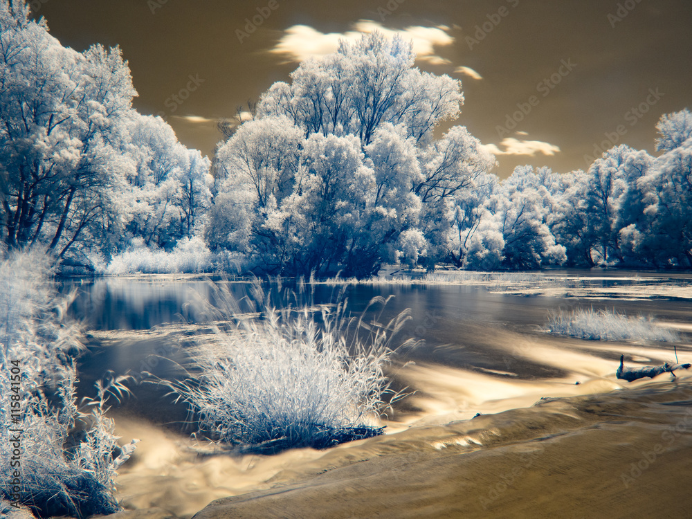 Fotografía  Infrared view at Danube floodplains in Slovakia under summer sky with clouds