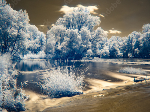 Infrared view at Danube floodplains in Slovakia under summer sky with clouds Plakat