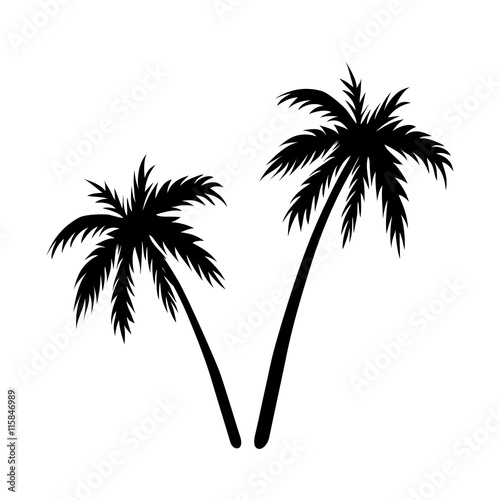 Two Palms Sketch Black Coconut Tree Silhouette Isolated On White