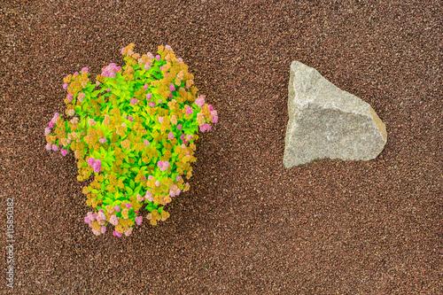 Steingarten Aus Strauch Mit Blüten Gebrochenem Blähton Als Granulat Und  Felsen Aus Granit   Stone Garden